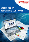 dream report brochure
